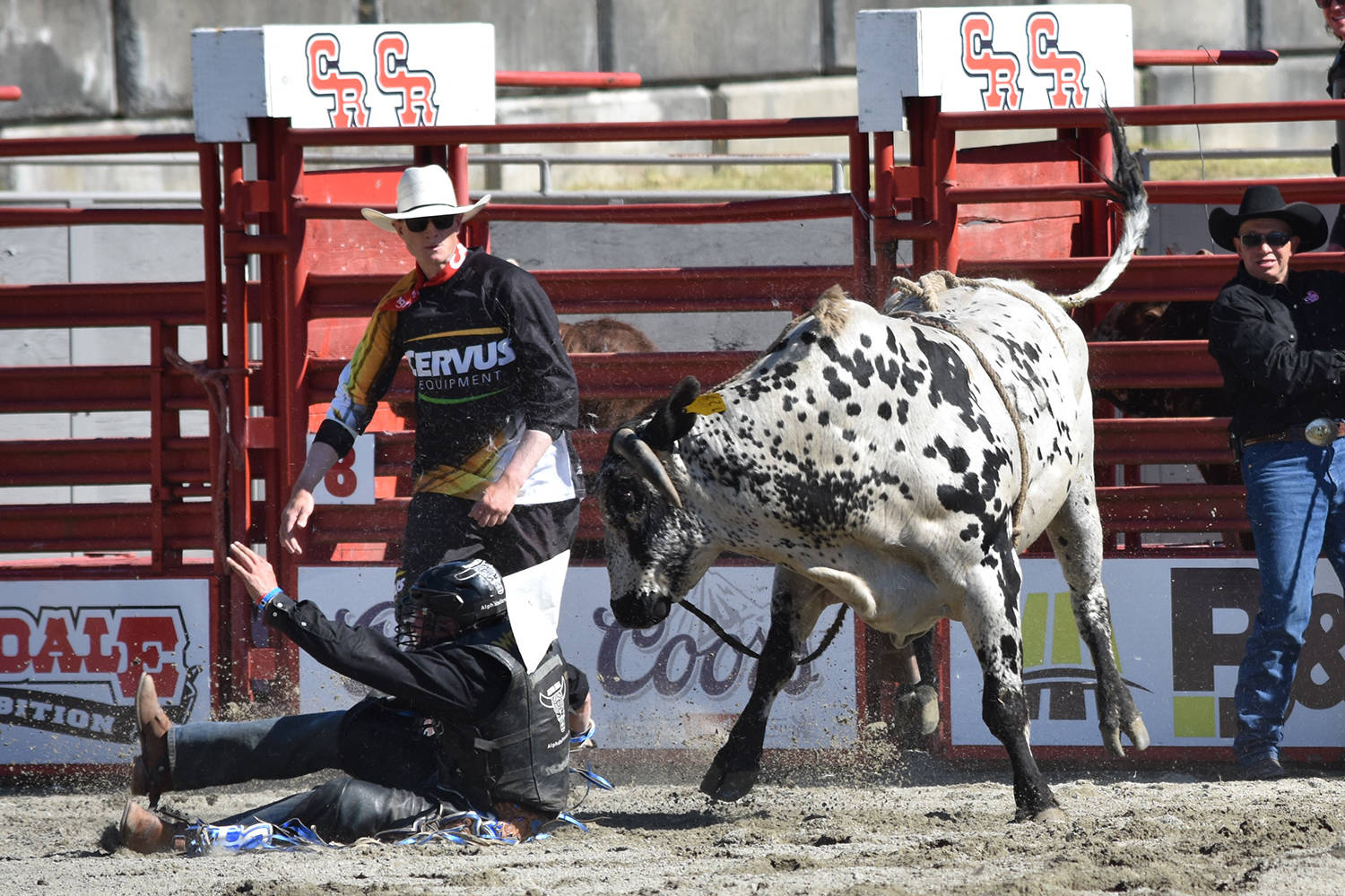 Bullfighter Scott Waye will be coming back to the Cloverdale Rodeo for his third year in 2018. (Grace Kennedy photo)