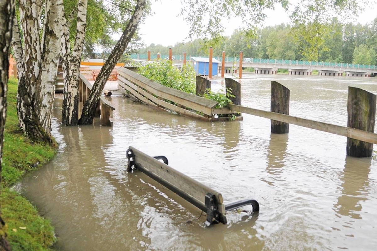 Flooding at Fort Langley's Marina Park in June, 2012 prompted the Township to close down the walking trail along the river and the boat launch. Langley Times File Photo