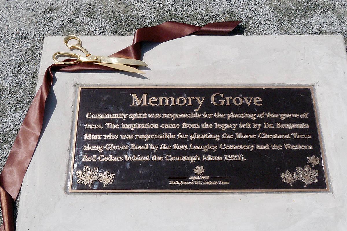 A plaque was unveiled. Dan Ferguson Langley Times