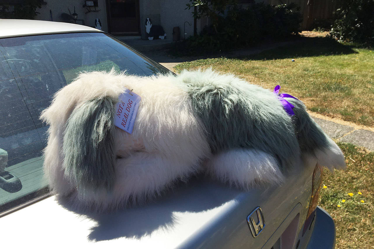 Blake Handley had to put additional labels and ribbons on his stuffed toy, Rory, after his car was broken into to 'save' a dog. Facebook/Blake Handley