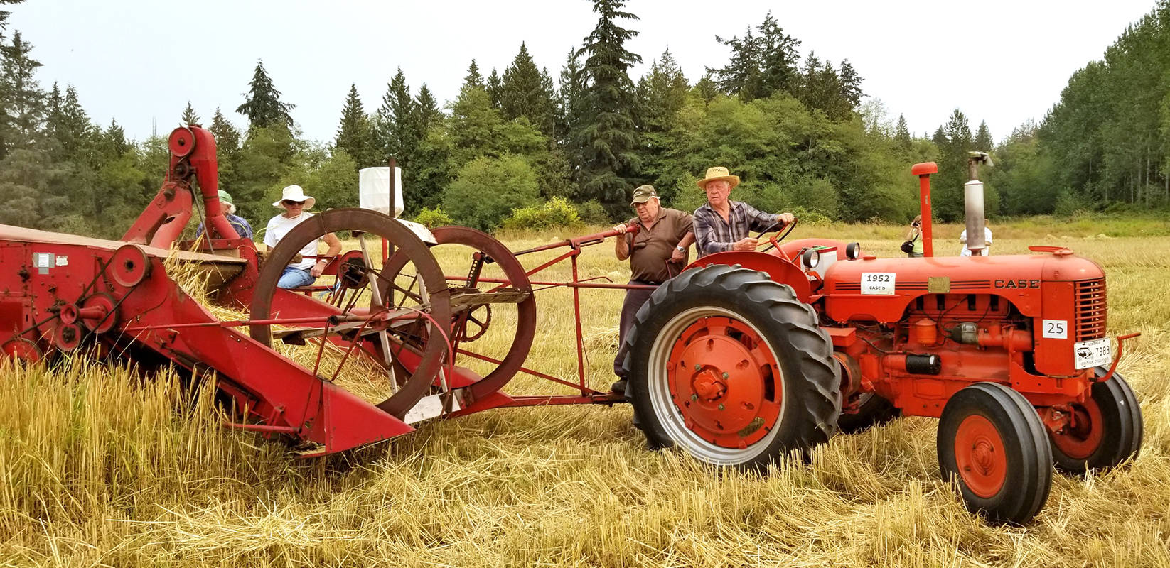 Antique machinery was used to harvest barley at MacInnes Farms on Saturday. Photo courtesy Syd Pickerell