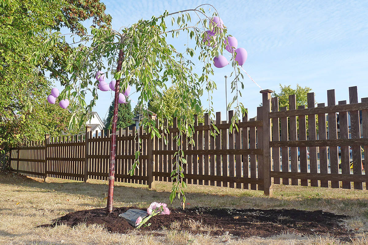 A tree was planted in memory of seven-year-old Aaliyah Rosa on the grounds of her former school.                                Dan Ferguson Langley Times