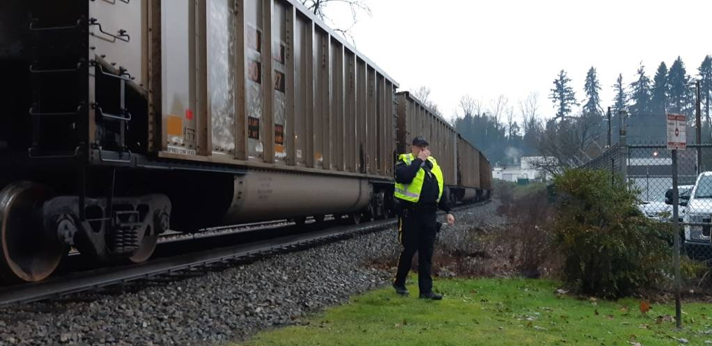 A CP train is stopped near Port Haney Station after reports a pedestrian was struck. (Colleen Flanagan/THE NEWS)