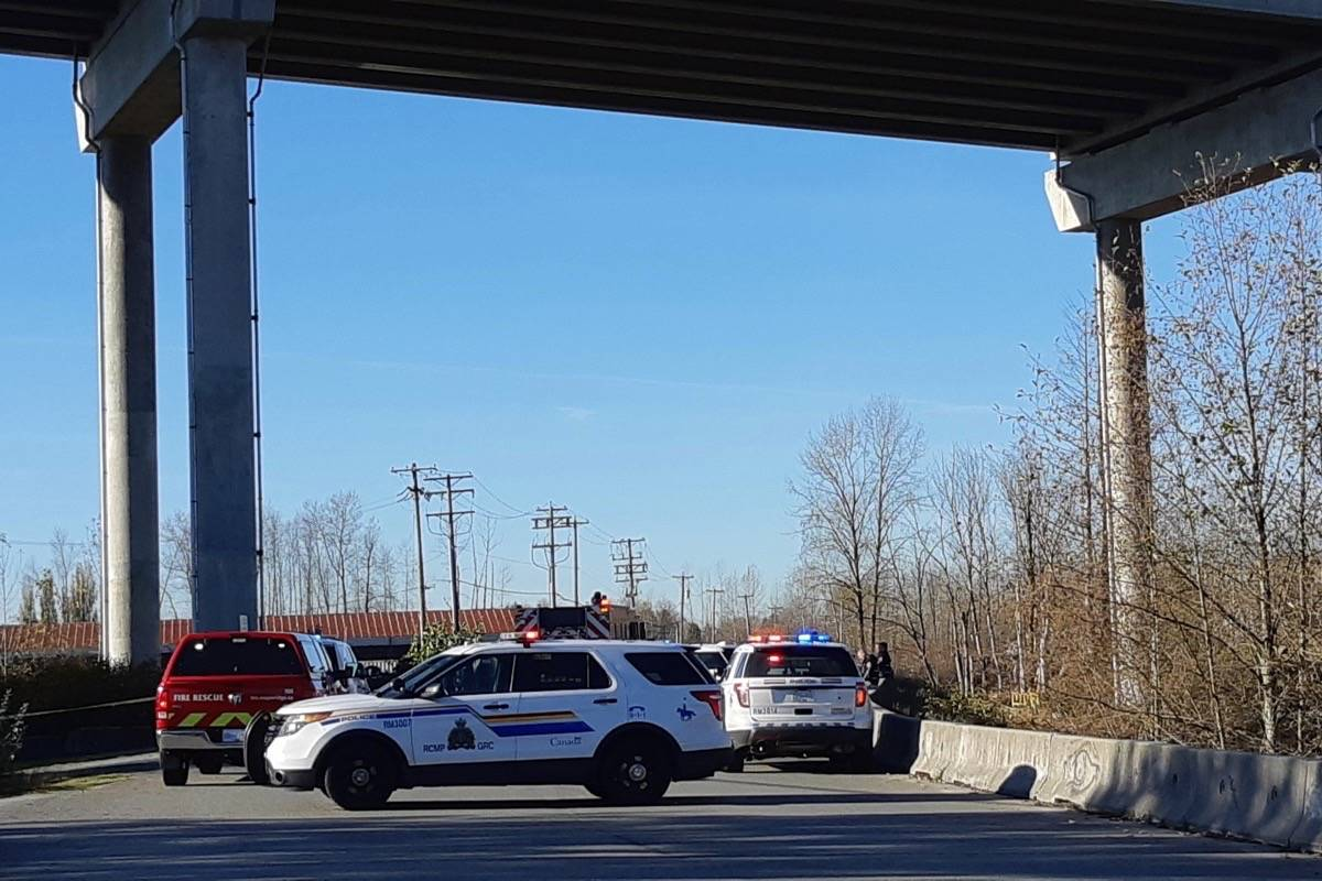 Mounties gather near the Golden Ears Bridge after a body was found in Maple Ridge Sunday. (Colleen Flanagan/Maple Ridge News)