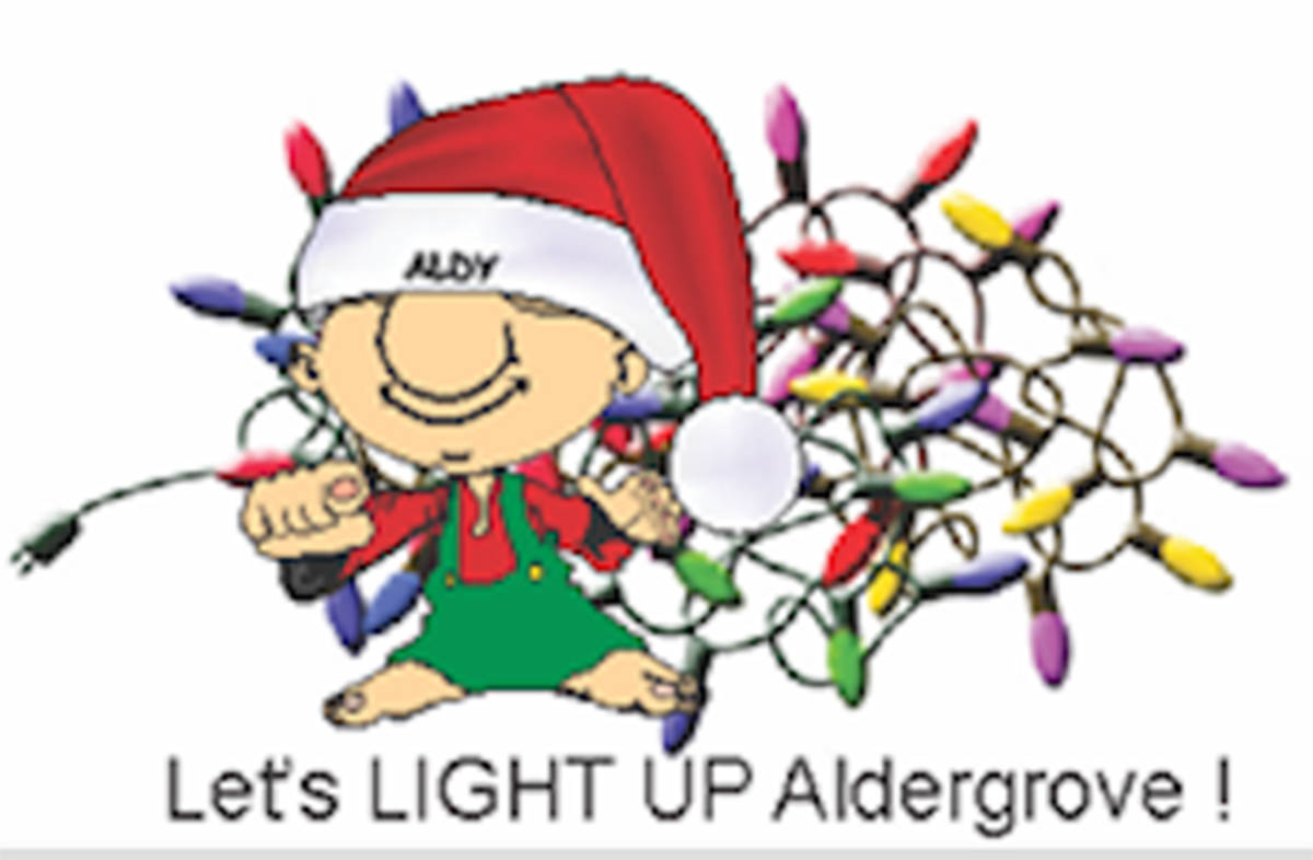 Light Up Aldergrove Christmas fun needs help