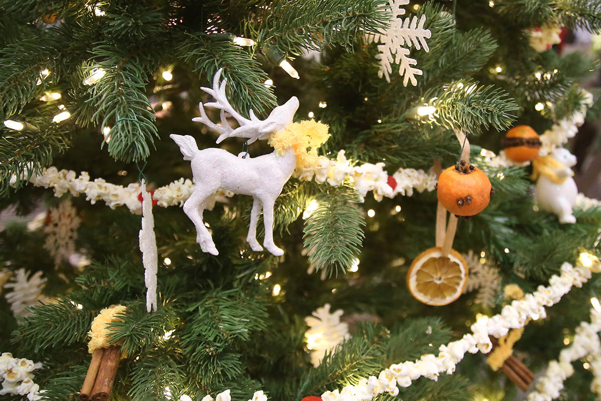 """Victoria council may stop funding Christmas decorations, such as Christmas trees, to make the city """"more inclusive."""" (File photo)"""