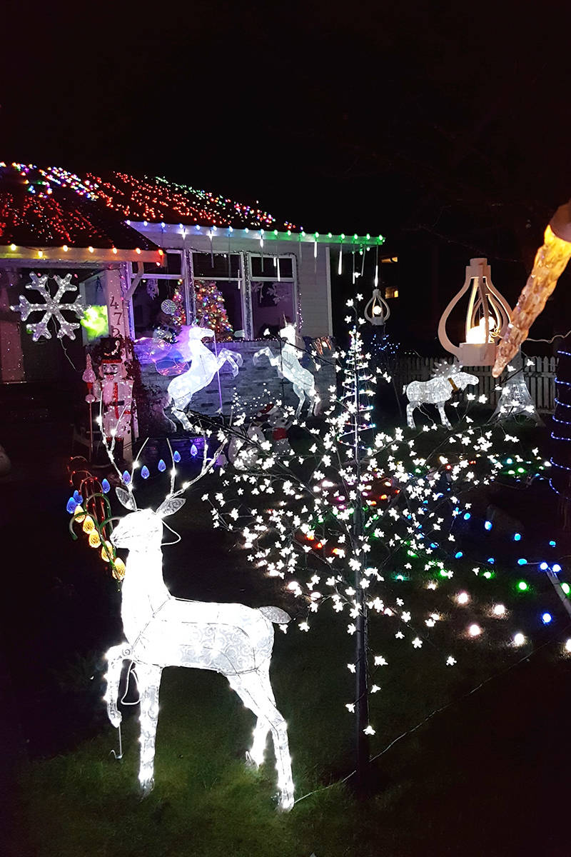 Chris Carlson's light display has reindeer, nutcrackers, and unicorns. Courtesy Lindsay Carlson