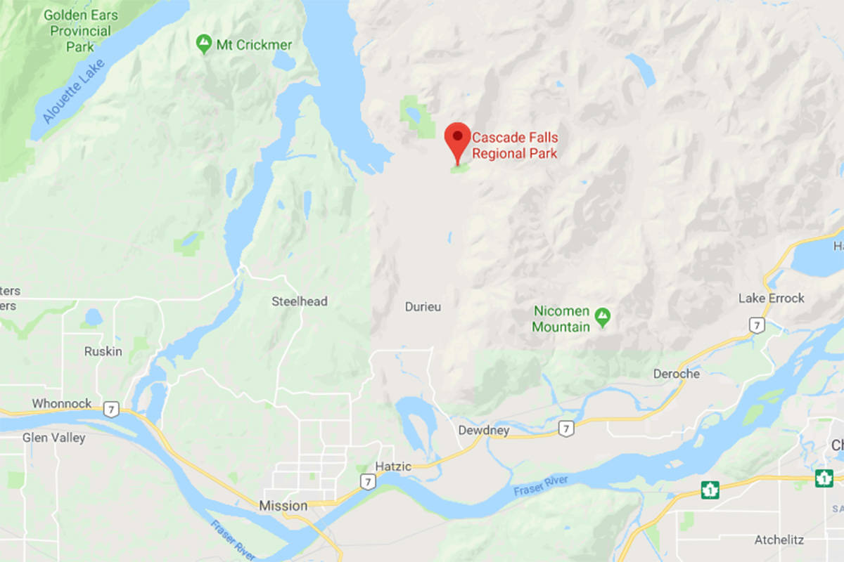 Two-year-old attacked by cougar near Mission, B.C.