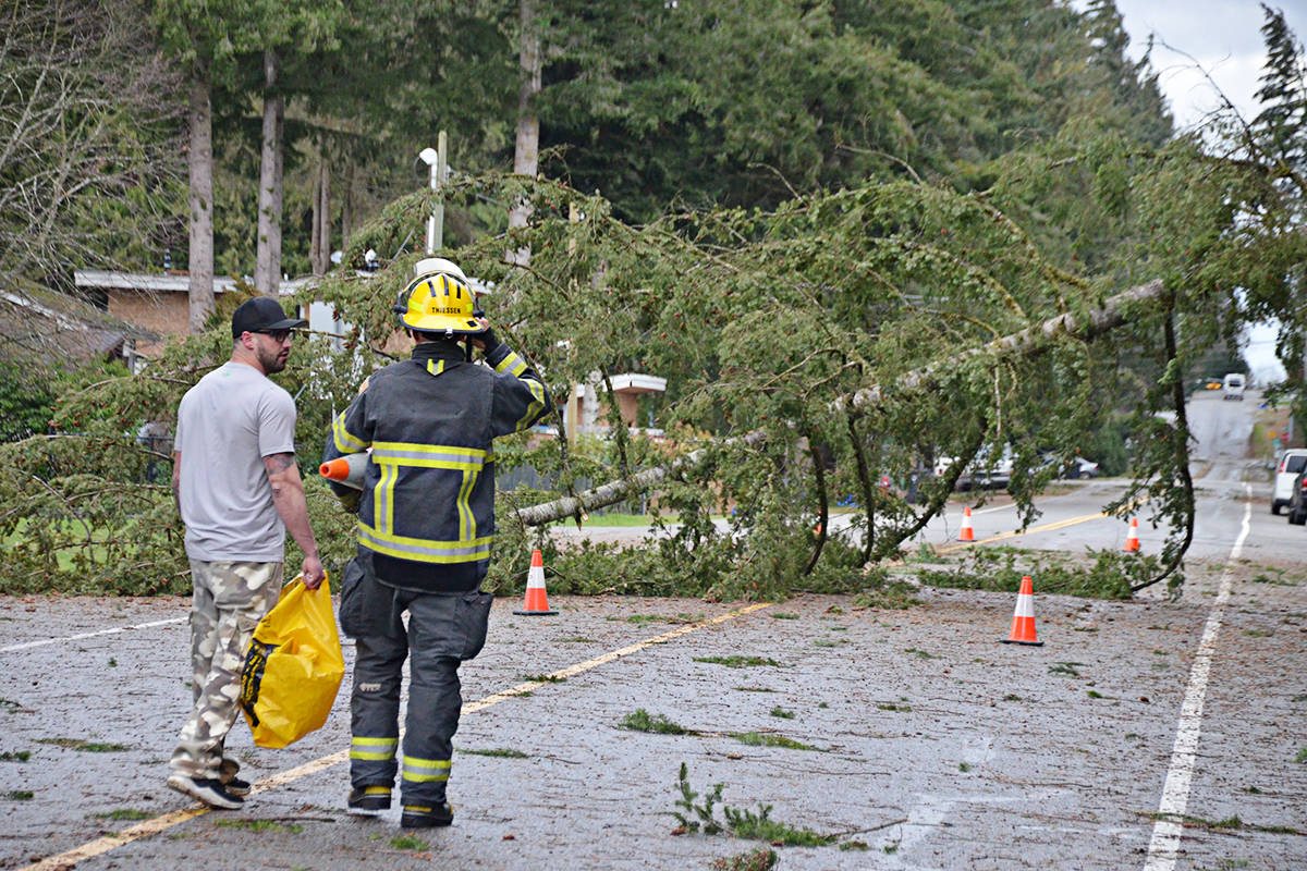 A resident of 36th Avenue in Brookswood spoke to a Township firefighter about a fallen tree and downed power lines west of 208th Street on Thursday morning. (Matthew Claxton/Langley Advance)