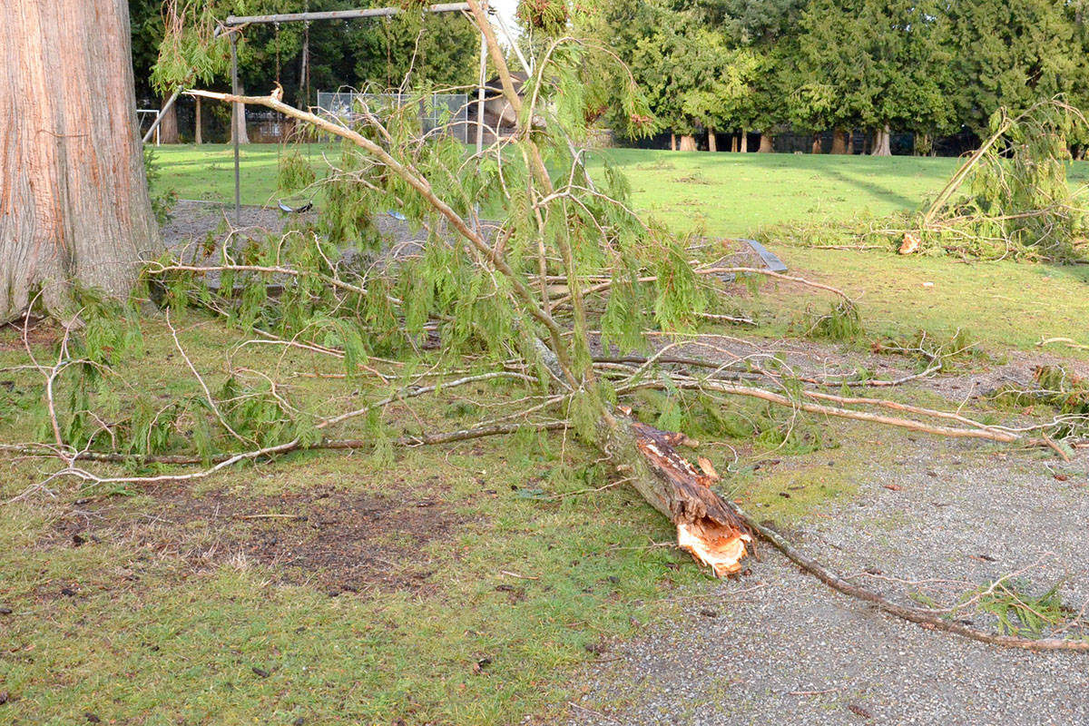 In addition to fallen trees, there was plenty of debris to be found around Langley, including large branches in the playground at Uplands Elementary. (Heather Colpitts/Black Press)
