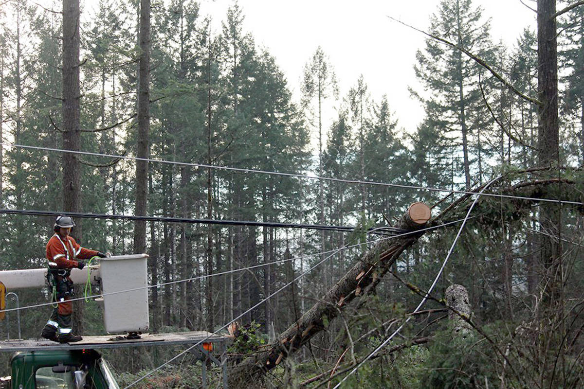 BC Hydro personnel working on downed trees and power lines after Thursday's severe storm (BC Hydro photo)