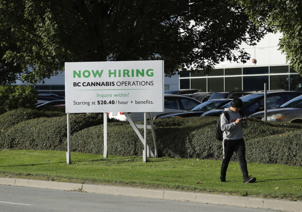 A pedestrian walks past a sign advertising jobs with BC Cannabis Operations in late September. (AP Photo/Ted S. Warren)