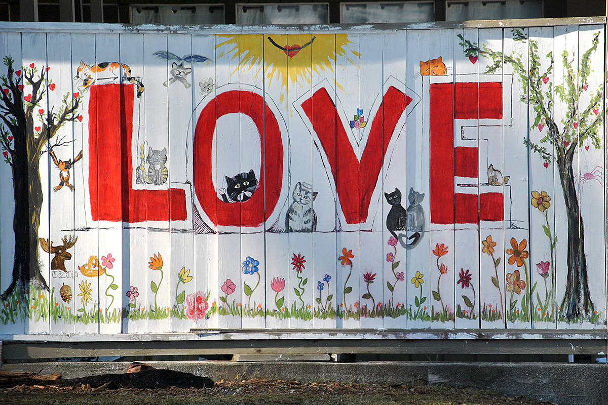 A number of homes and former commercial spaces in the village of Fort Langley have been boarded up recently by their owner. Meanwhile, one property has painted up a fence with a message of love. (Roxanne Hooper/Langley Advance)