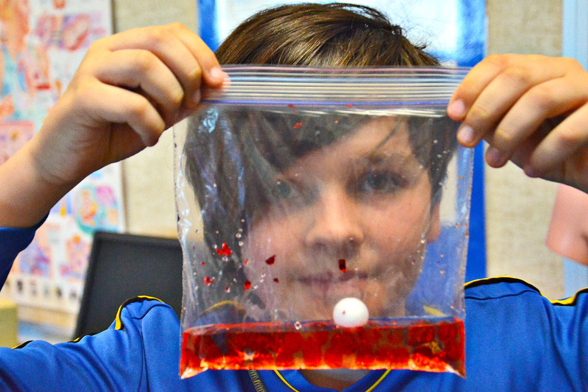 Marcus Dreves checked out many of the events at Science Rendezvous, including the craft where people made bags of blood. Glitter and other craft items represented the various constituents of blood. (Heather Colpitts/Langley Advance)