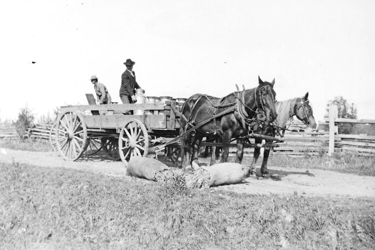 Last week's photo showed a horse and wagon on the Robert Wark farm around 1910. (Langley Centennial Museum collection)