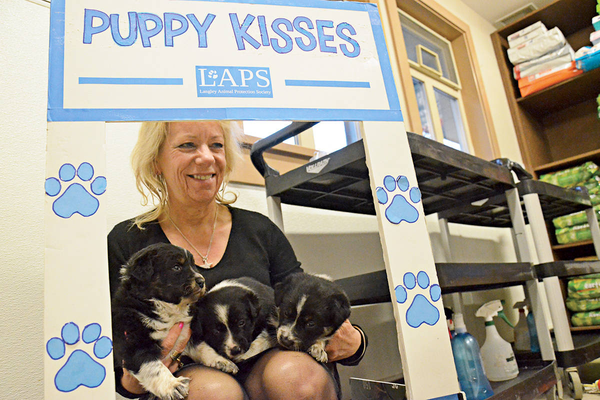 Cupcake Day comes with sweet kisses from Langley puppies