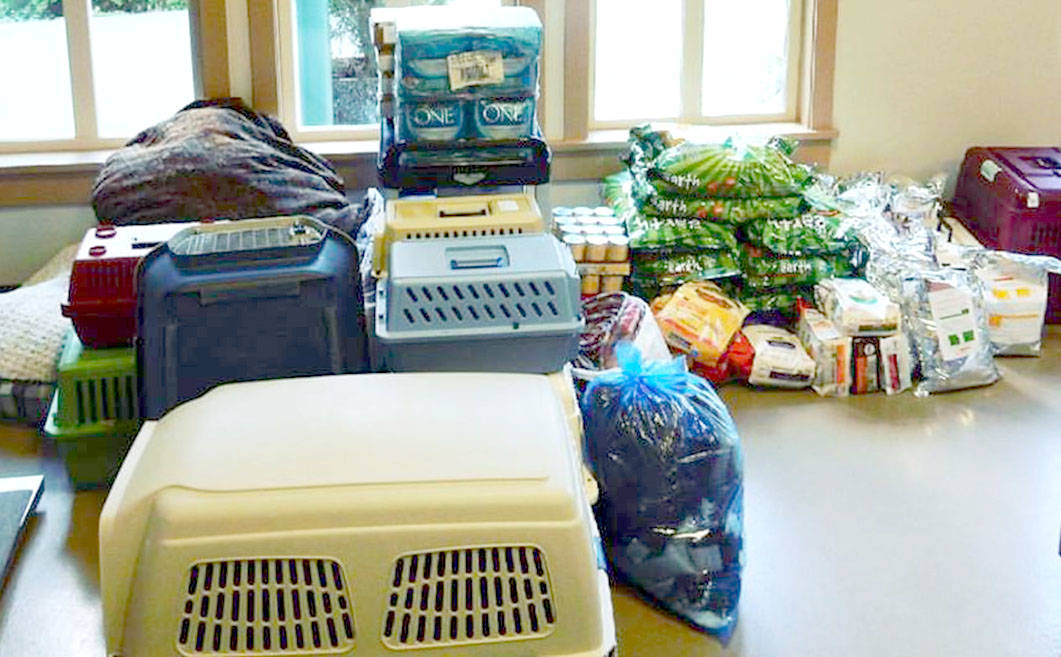 LAPS and its supporters have sent some much needed cat and dog food, blankets, beds, and crates up to Princeton through Abbotsford's Brittany Ford. Now, the Langley shelter team is collecting more donations that will go up to the Interior with LAPS executive director Jayne Nelson and animal control officer Tina Jensen Fogt this Thursday. (SPECIAL TO THE LANGLEY ADVANCE)
