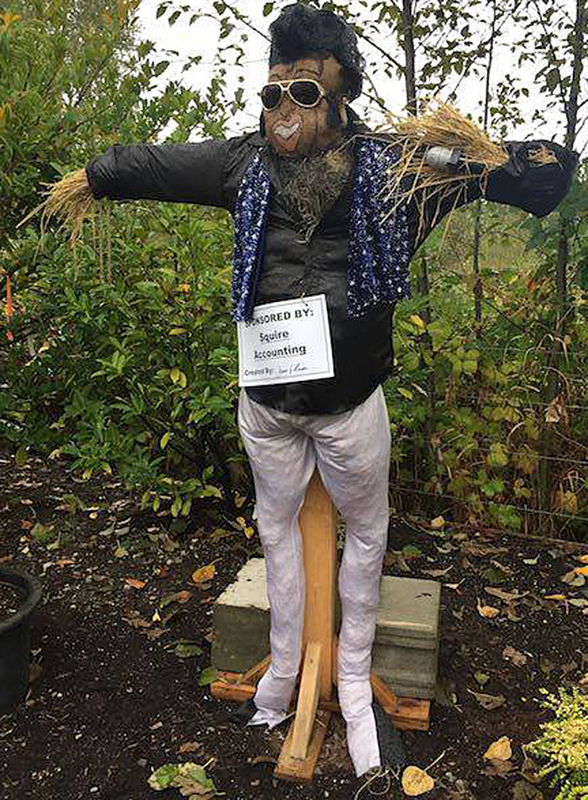 VIDEO: Scarecrow fest fosters family fun and fundraises