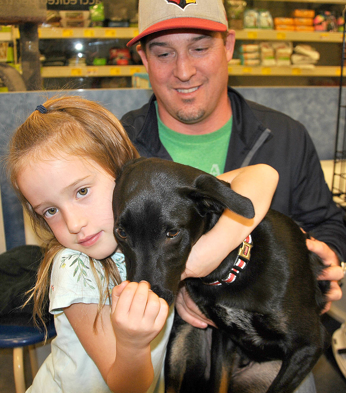 Girl foregoes birthday gifts to help homeless dogs