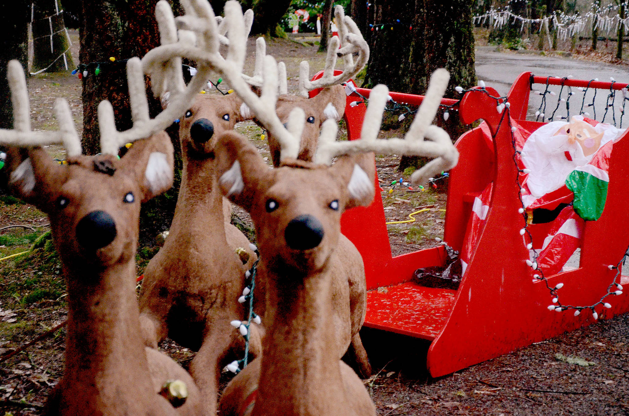 Helpers needed to install annual Christmas display in Langley park