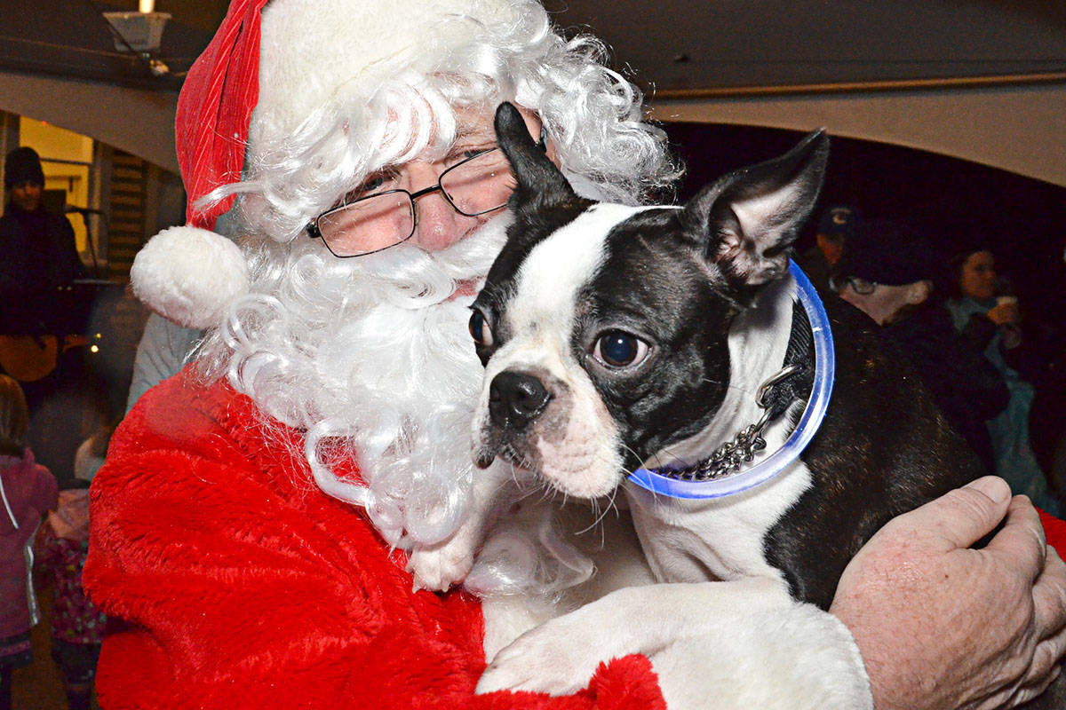 The Fort Langley Christmas Tree Lighting was Saturday and Winston was there, getting to have his photo taken with Santa. (Heather Colpitts/Langley Advance)
