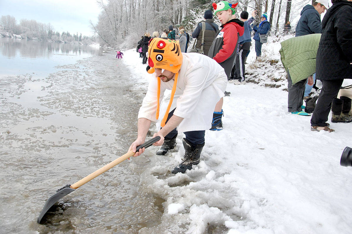 Polar bears prepare for Langley's New Year plunge