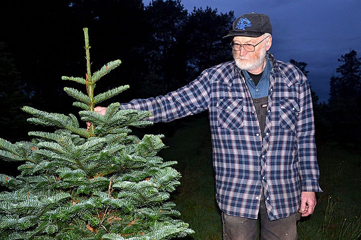 Ole Sorensen and his wife Dora operate a Christmas tree farm at the end of 236th Street in South Langley.