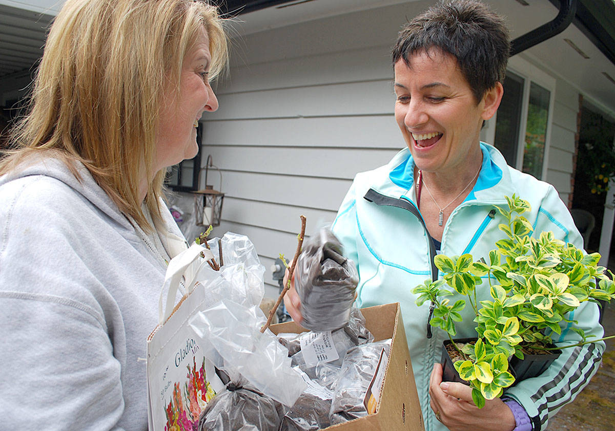 Pam Dangelmaier (right) talked plants with Brookswood's Karen Stewart Saturday during a seasonal plant sale where she selling off leftover spring stock from her Langley-based mail-order plant business called Bontanus. (Roxanne Hooper/Langley Advance)
