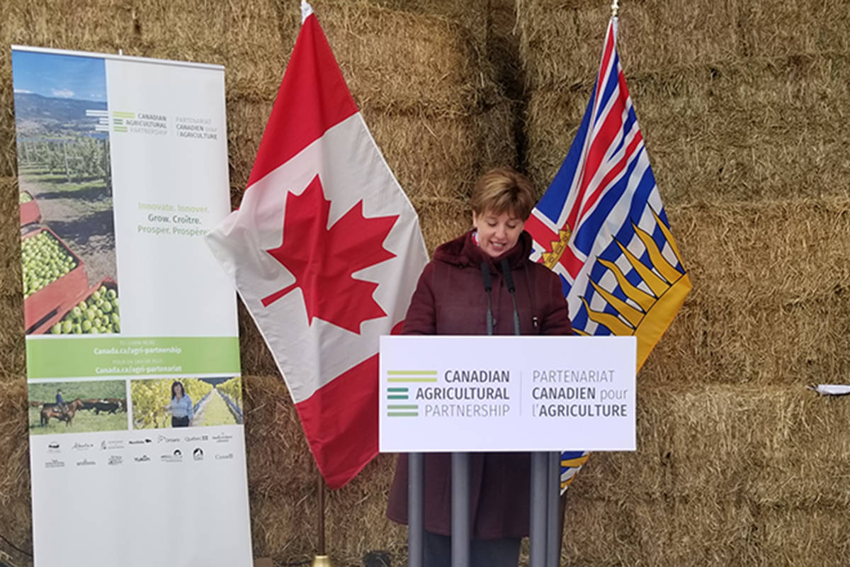 Newly appointed federal agriculture minister Marie-Claude Bibeau announces at a Vernon farm Monday a partnership with B.C. to trigger a late participation program to help farmers who suffered losses in a challenging 2018. (Roger Knox - Black Press)