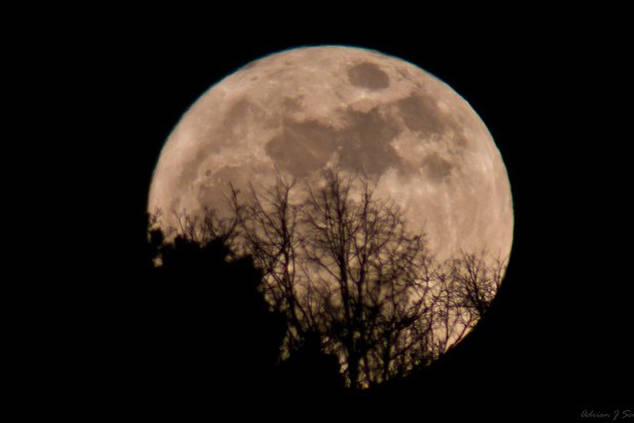 """The first full moon in March is called a """"full worm super moon."""" (Adrian J. Scott photo/Twitter)"""
