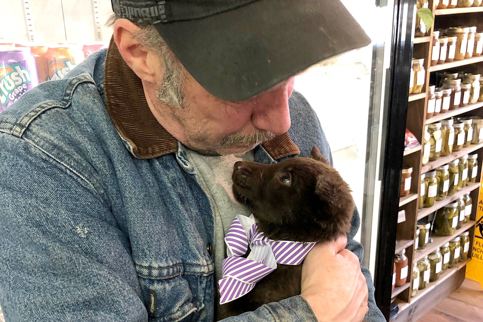 Barry Christian, of Lumby, was gifted a puppy a few months ago, but the pup has since been stolen. (Submitted Photo)