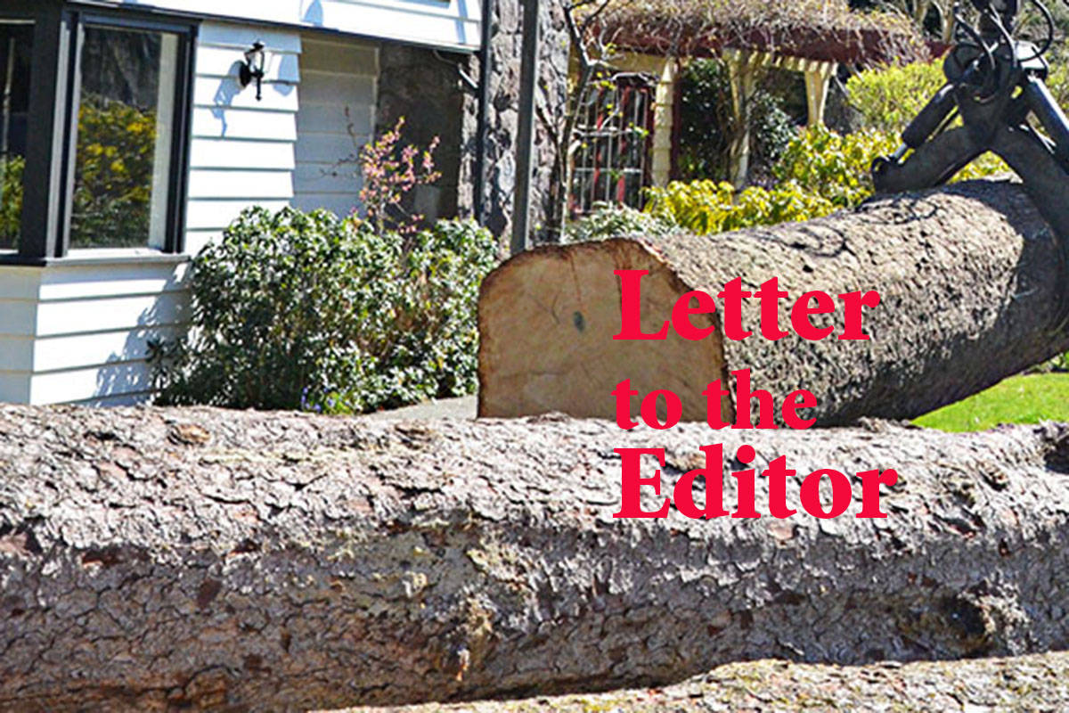 Tree bylaw threat danger to trees