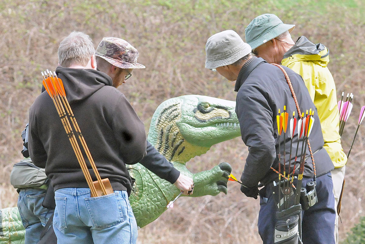 Archers retrieve arrows from a target dinosaur during a 3D competition at the that allows them target replicas of real and unreal creatures. Dan Ferguson Langley Advance Times