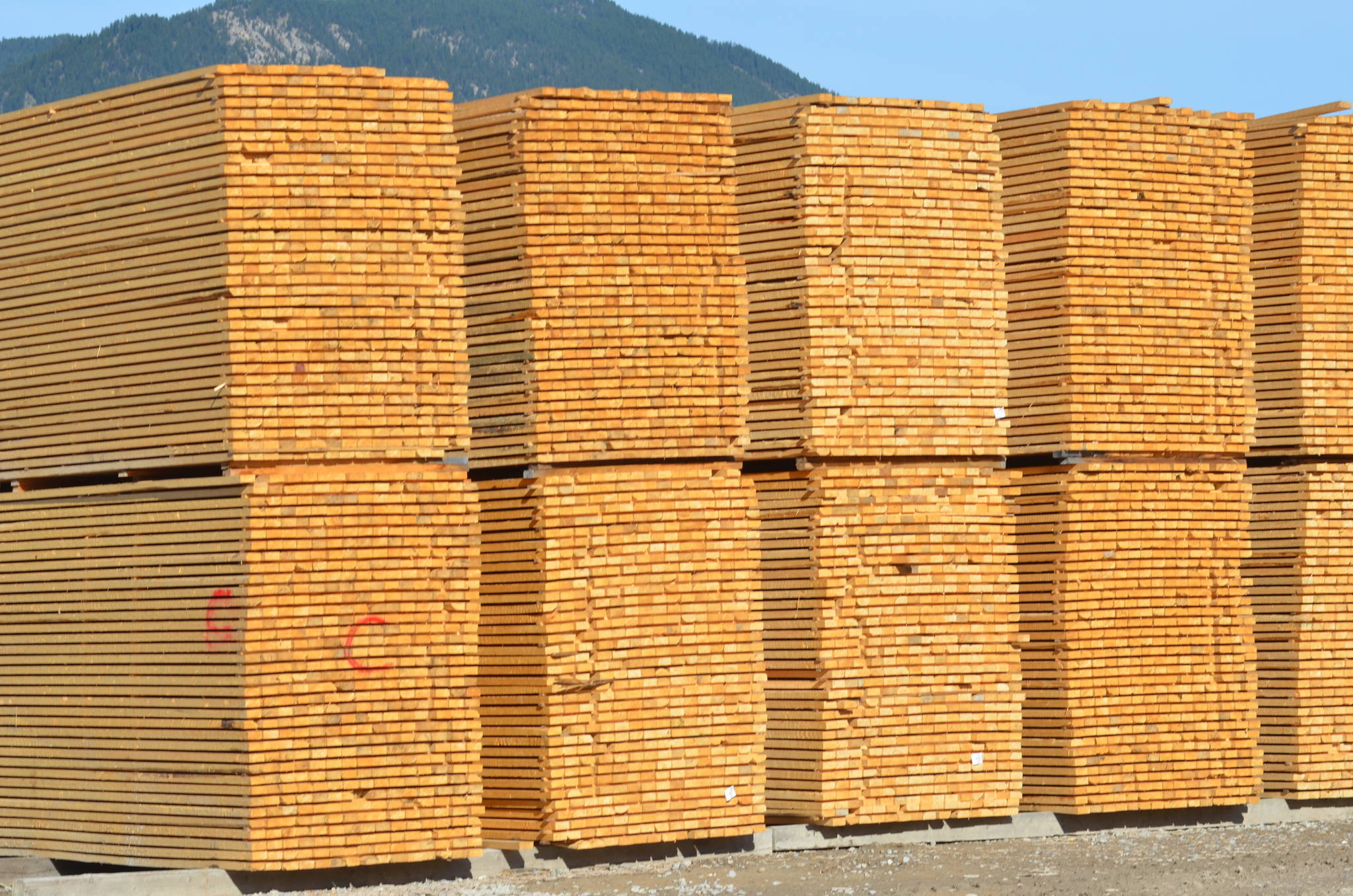 Canfor temporarily shutting down lumber mills across B.C.