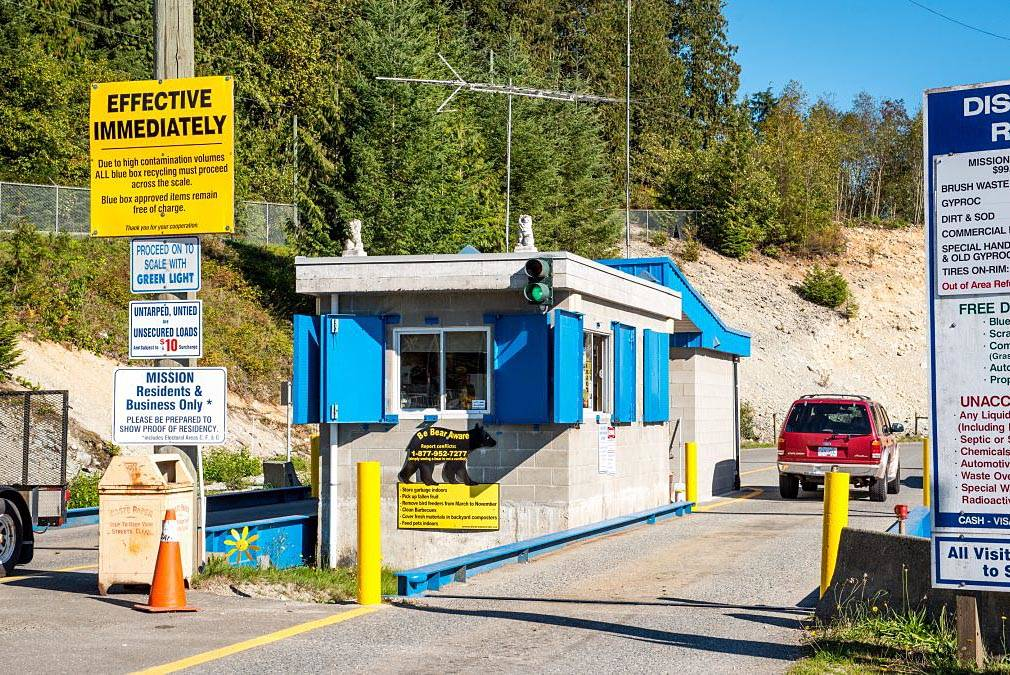 Woman traumatized after seeing bear carcass disposed of at B.C. landfill