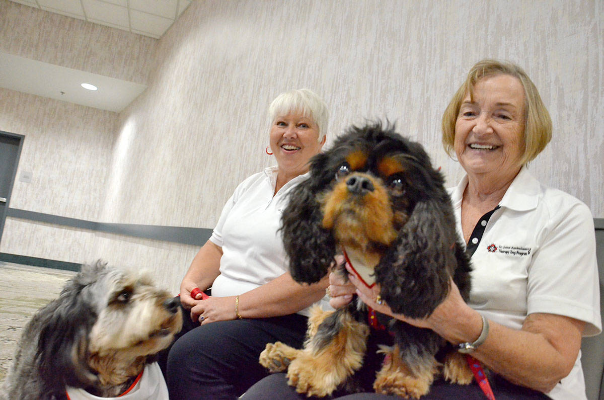 Sheila Pyplacz, with her dog Indy, and Darlene Barling, owner of Dennis, are with the St. John's Ambulance Therapy Dog program. (Heather Colpitts/Langley Advance Times)