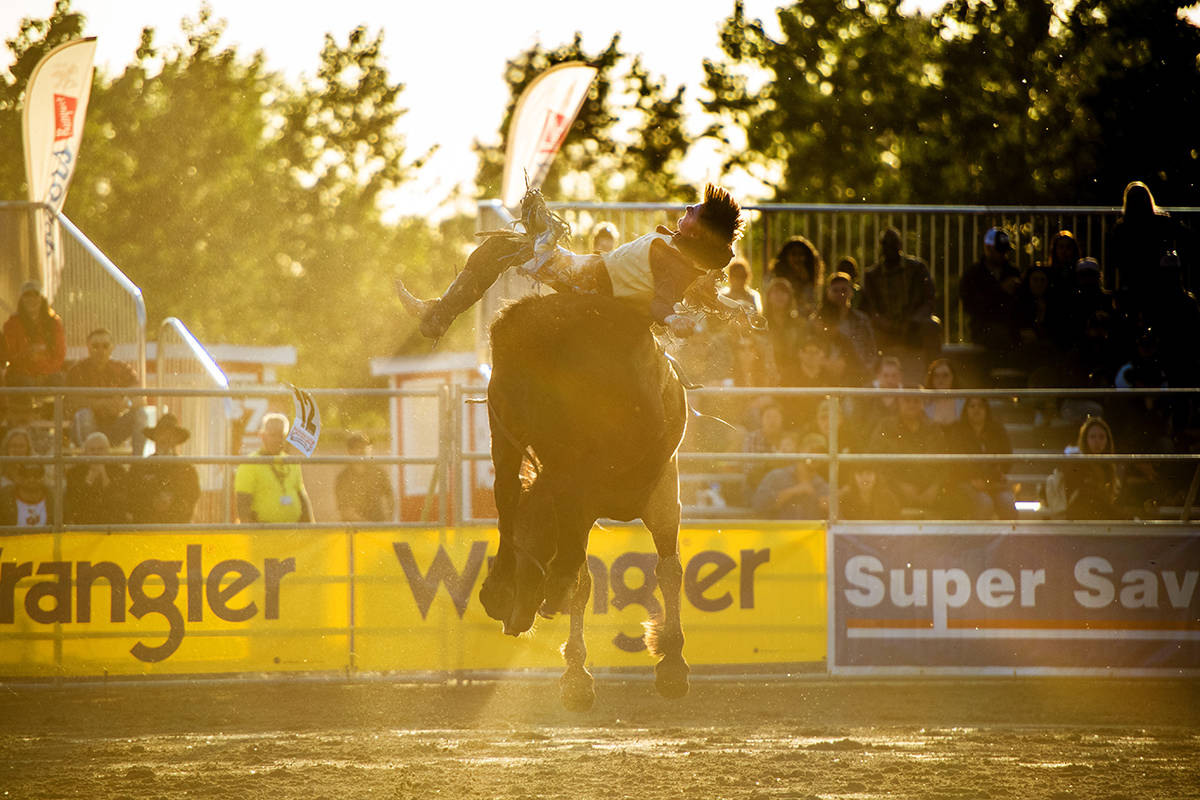 Shawn Perkins in the bareback bronc event at the 2019 Cloverdale Rodeo. (Ryan McLeod)