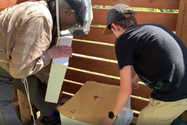 Jack Gray, 13, (in protective clothing) and his 99-year-old great-grandfather Alan Graham install a bee hive in the boy's Rossland backyard two weeks ago. Photo courtesy Graham family