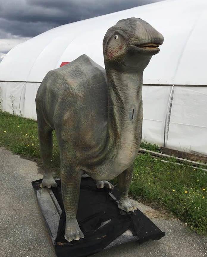 Dinosaur stolen from Lickman Road