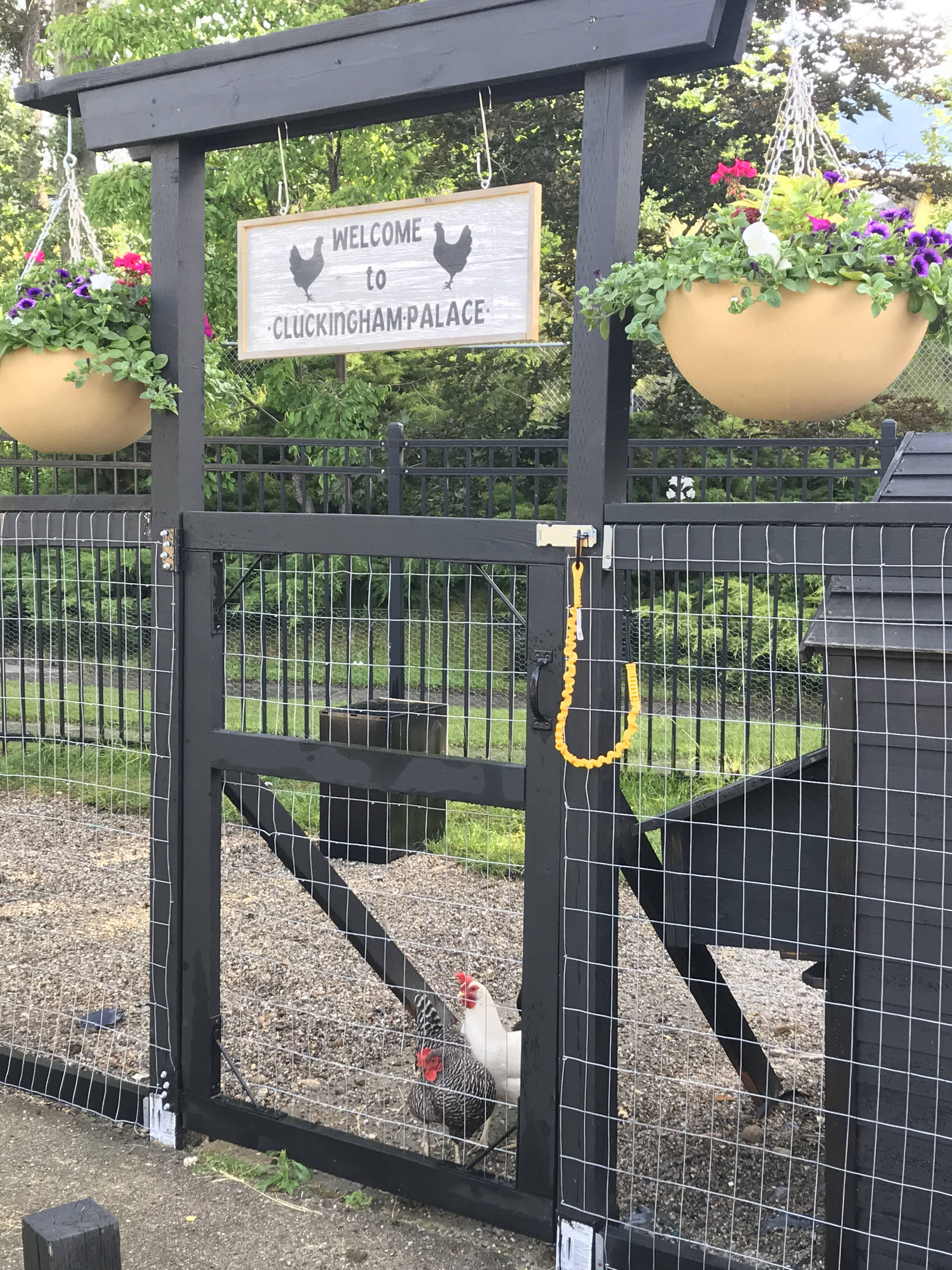 'Cluckingham Palace' was built this year with the aid of some local businesses. Submitted photo