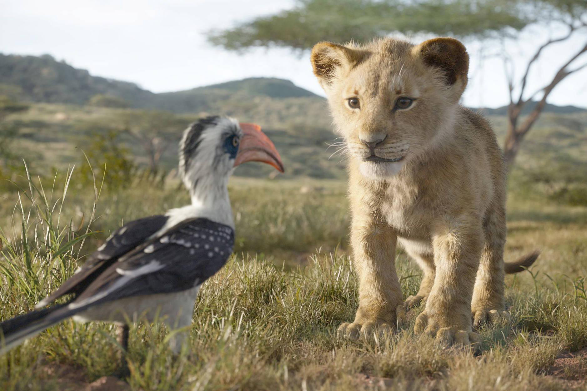 The Lion King. (Walt Disney Pictures)