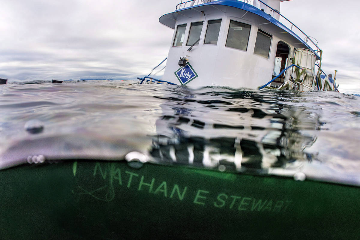 The tug boat Nathan E. Stewart is seen in the waters of the Seaforth Channel near Bella Bella, B.C., in an October 23, 2016. (photo THE CANADIAN PRESS/HO-Heiltsuk First Nation, April Bencze)