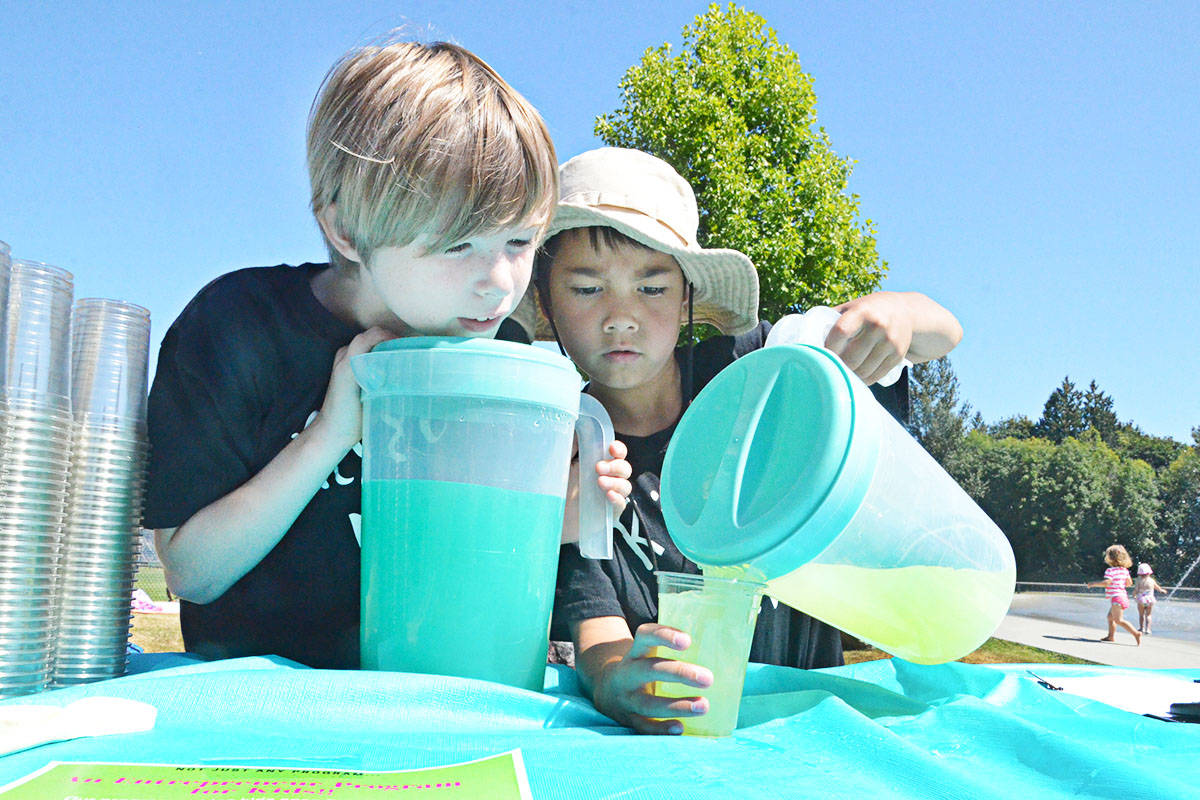 Langley kids' lemonade stand helps charity