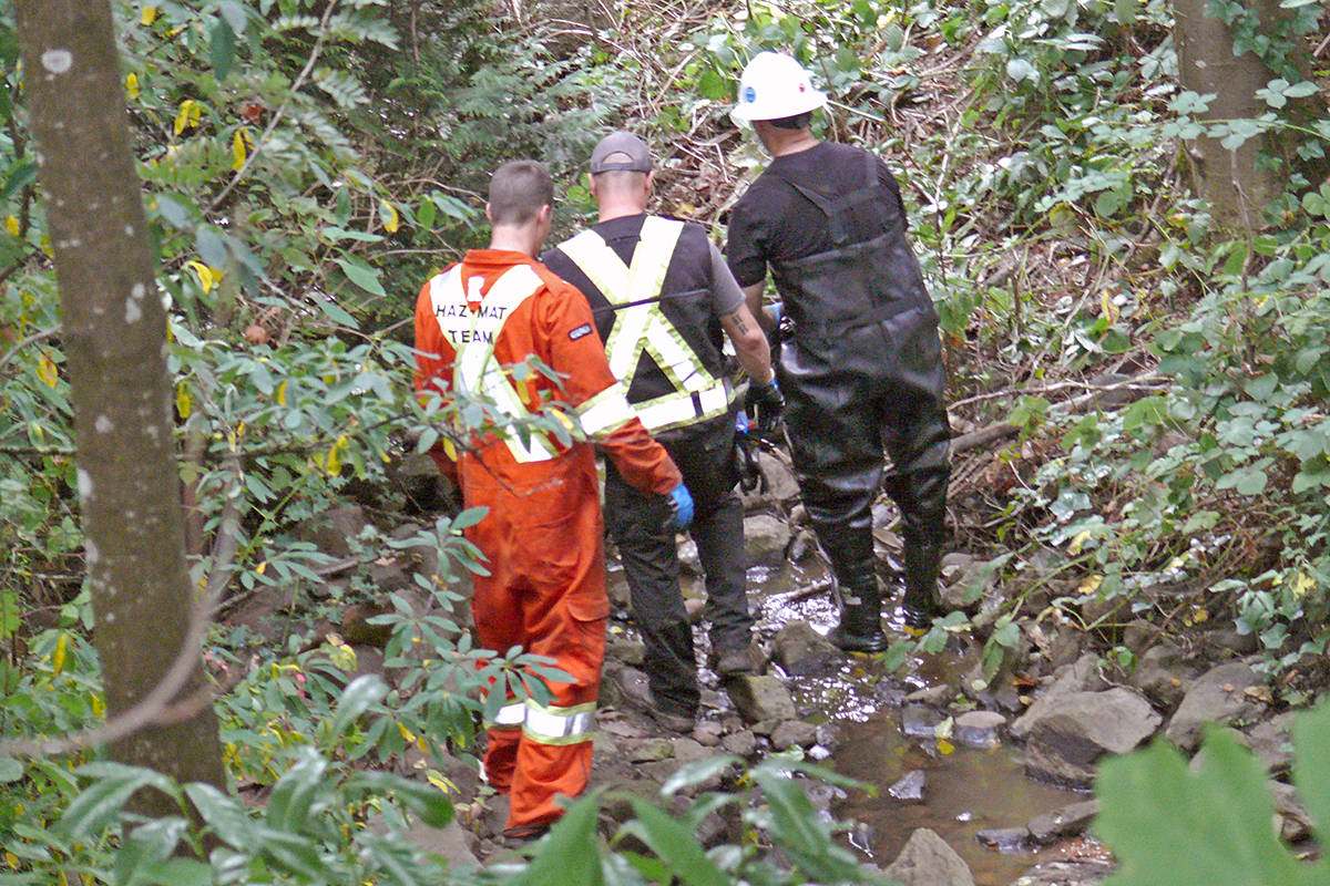 UPDATED: Oil spill suspected in Langley City creek