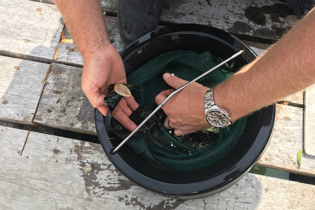 Jeff McKay showing how small pieces of plastic can often be overlooked but are a big danger to marine animals and fish. (Nick Murray/News Staff)