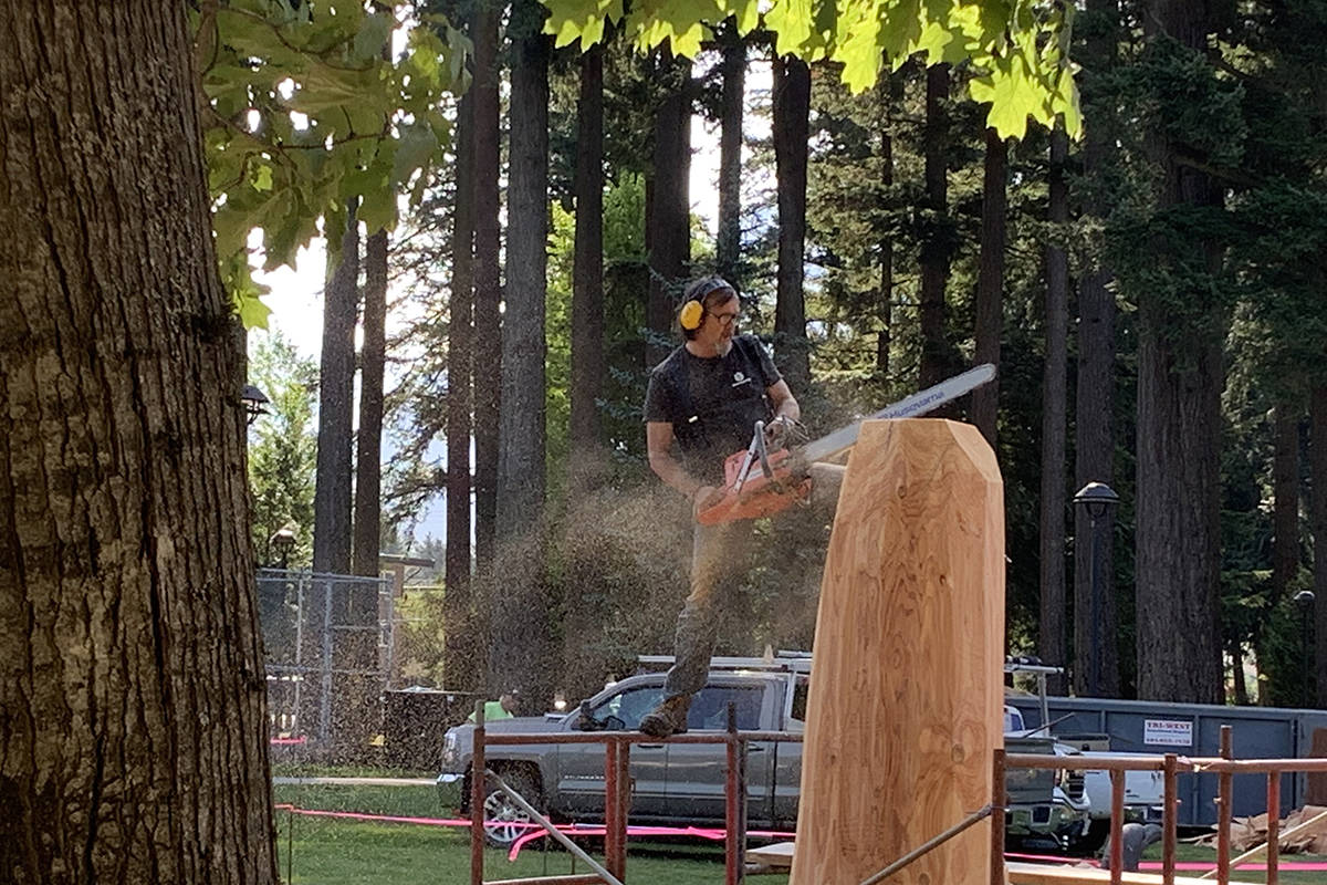 Rocky LaRock takes to a scaffold to cut away the first slices of his piece at the 2019 Chainsaw Carving Competition in Hope Memorial Park on Thursday morning. (Jessica Peters/ Black Press)