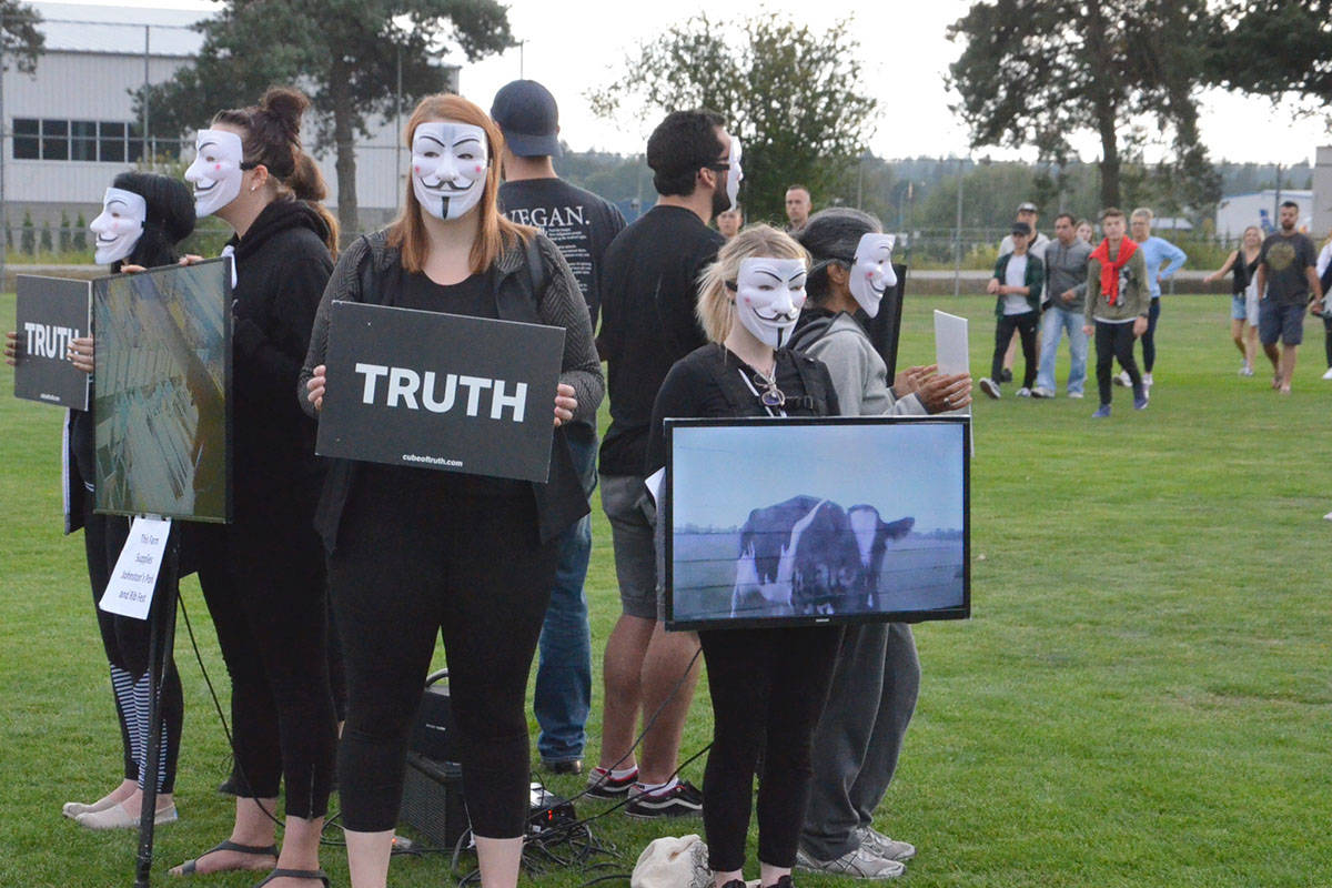The group Cube of Truth held a silent multi-media protest at the Langley Ribfest on Friday evening. (Heather Colpitts/Langley Advance Times)