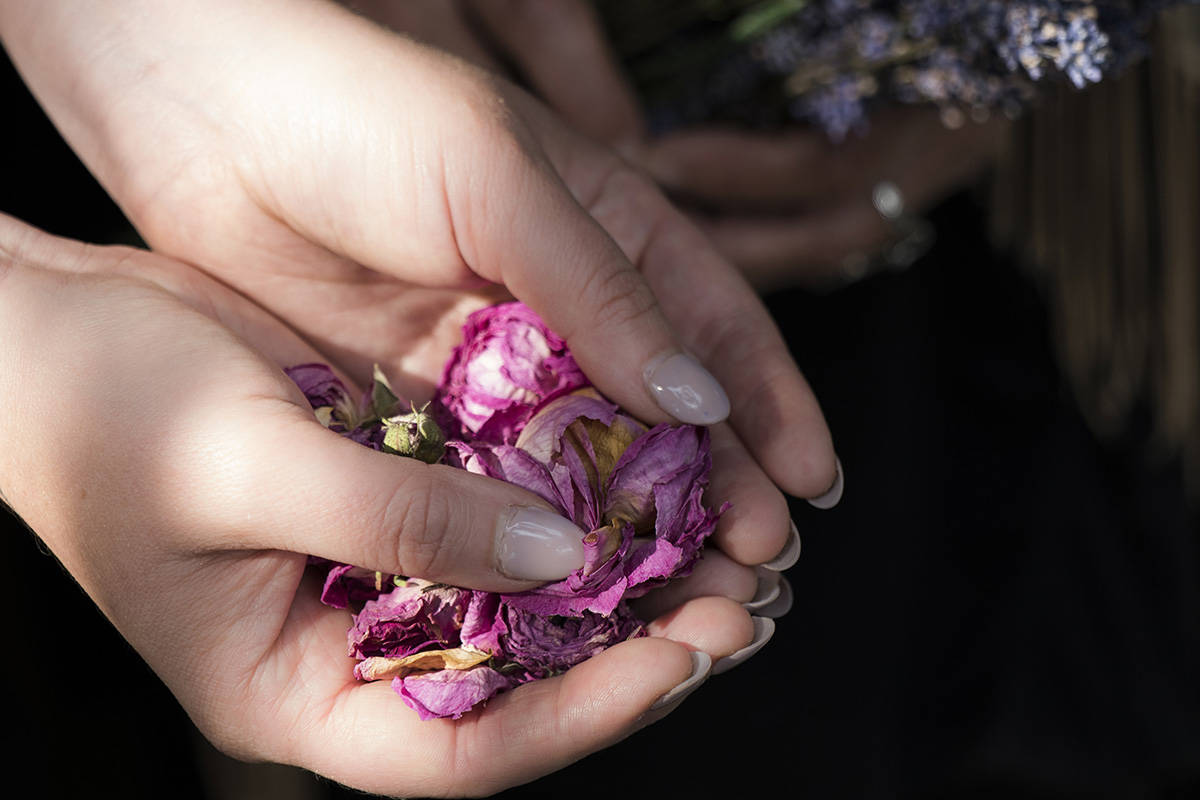 The language of scent