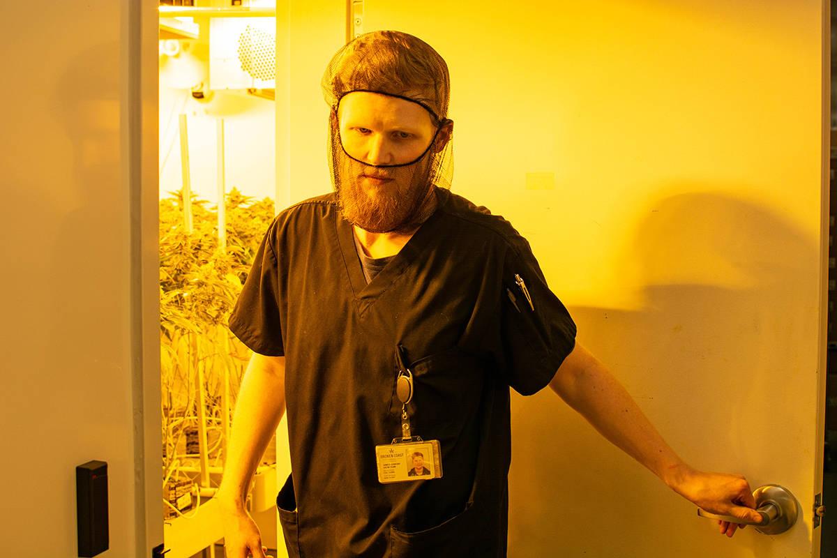 Lead grower James Jenkins opens a grow room door at Broken Coast in North Cowichan on Vancouver Island. (Nick Laba/Black Press Media)
