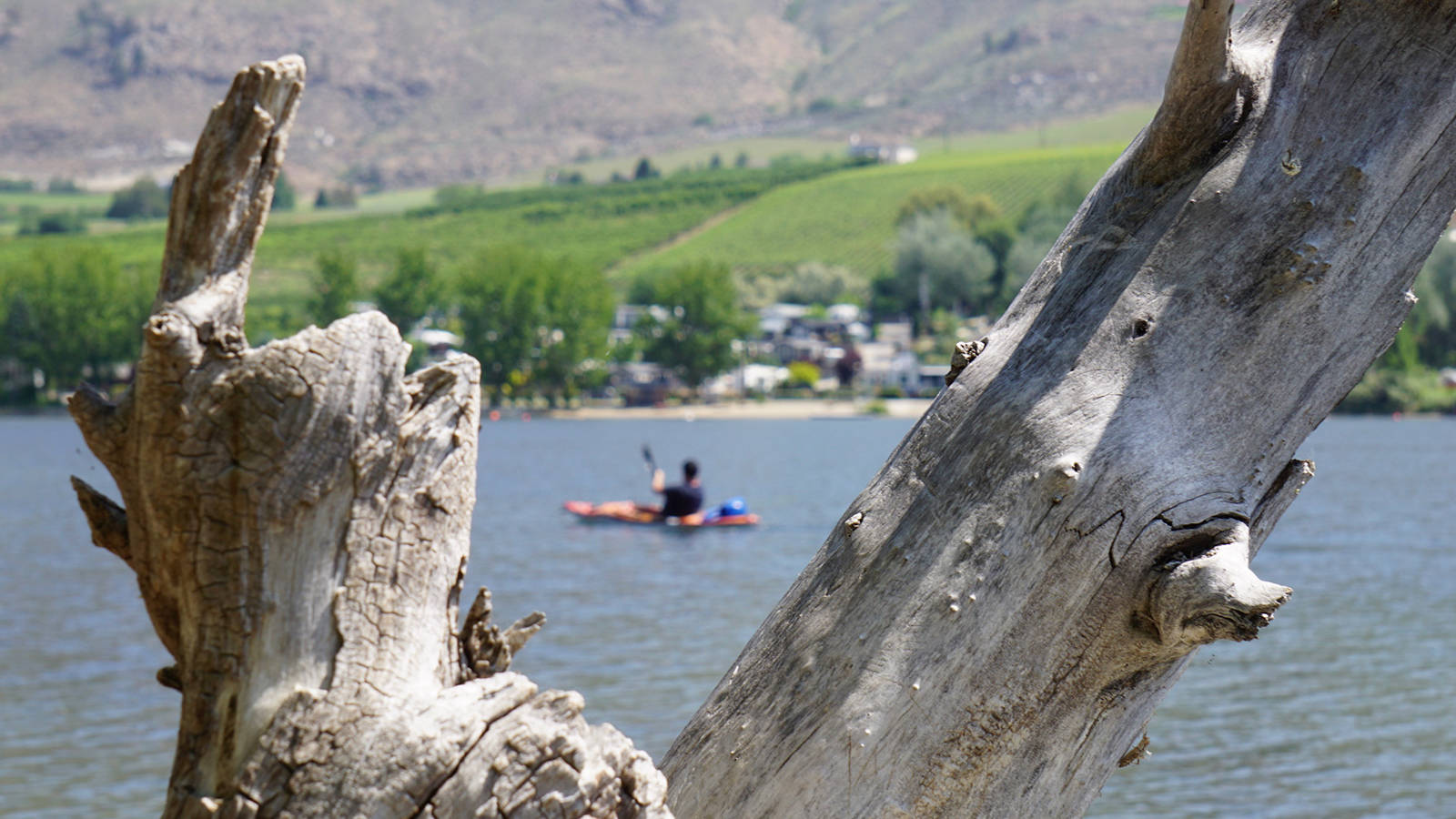 In the South Okanagan, Indigenous Culture Speaks from the Heart